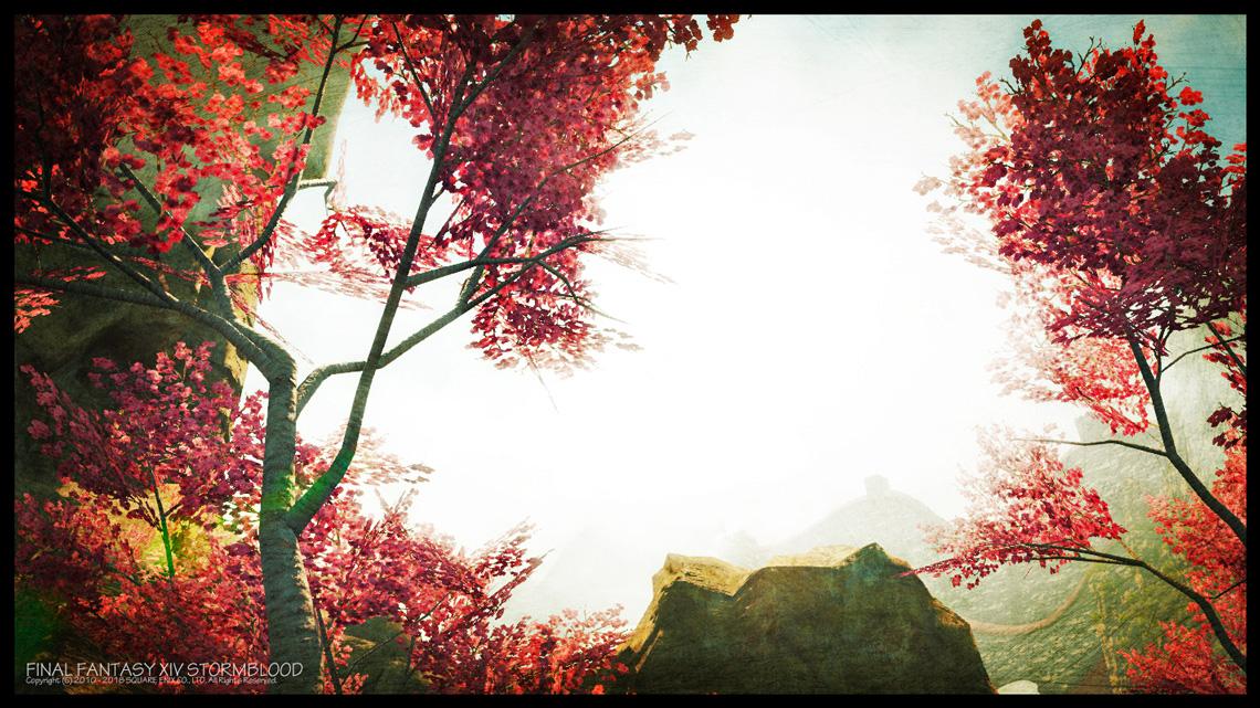 梅の木とヒーラーの悩み